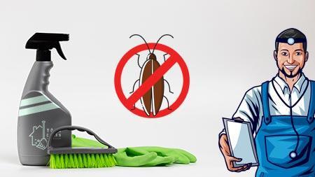 הדברה וניקיון בתים